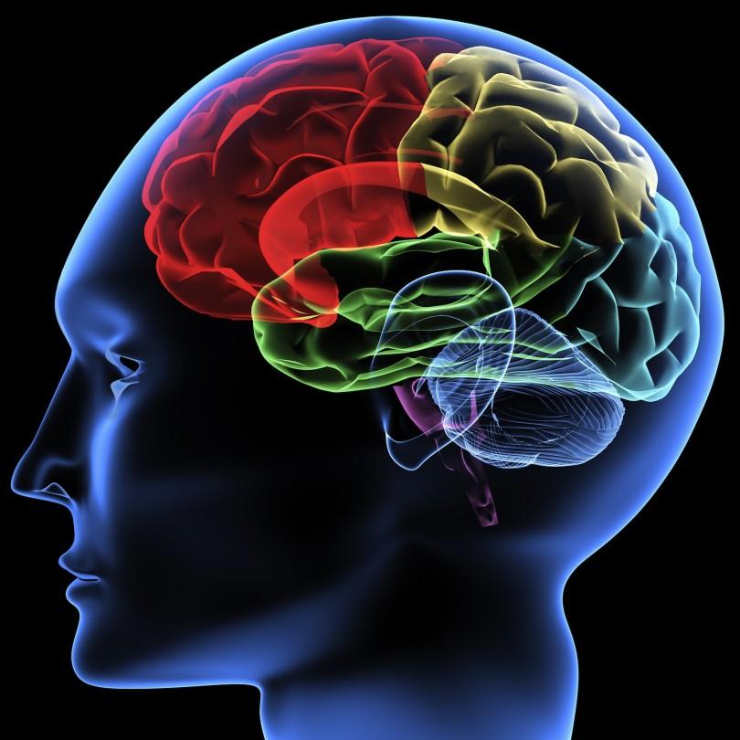 اتصال به اینترنت با مغز، آیا ممکن است؟