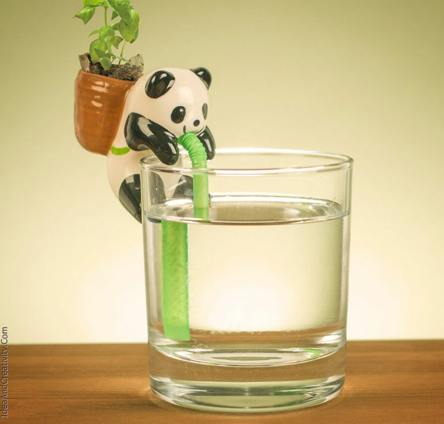 حیوانات کوچک و زیبایی که به گیاهان شما آب می دهند